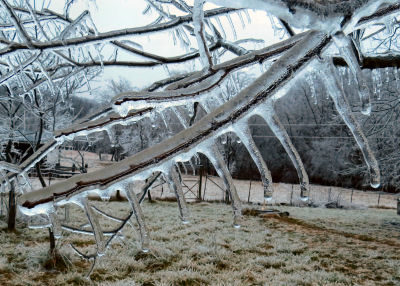 ice storm coating