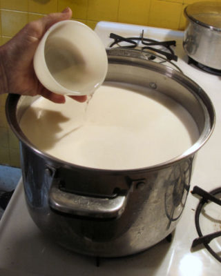 Using rennet for making mozzarella