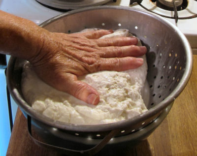 pressing the curd into cheese while making mozzarella