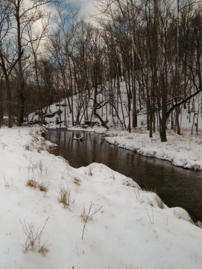 Snow days leave the creek flowing between snowy banks