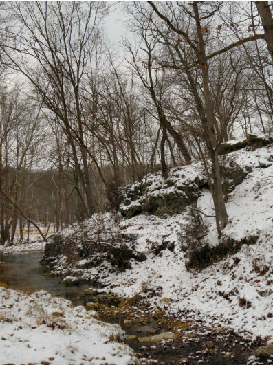 Snowfall number five scattered snow on the hills and rocks along the creek.